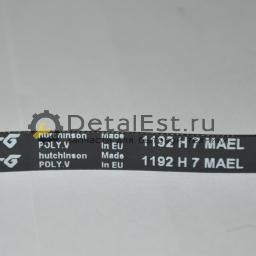 Ремень для стиральных машин ELECTROLUX,AEG,ZANUSSI 1192 H7 1290775509